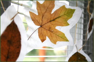 wax-paper-leaves-1